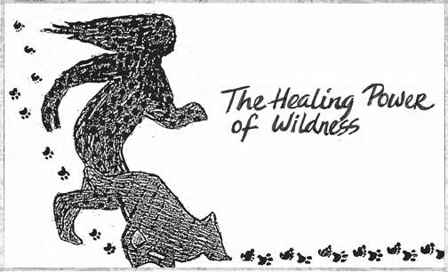 The Healing Power of Wildness